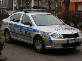 Policie dopadla zlodeje v Central Kladno